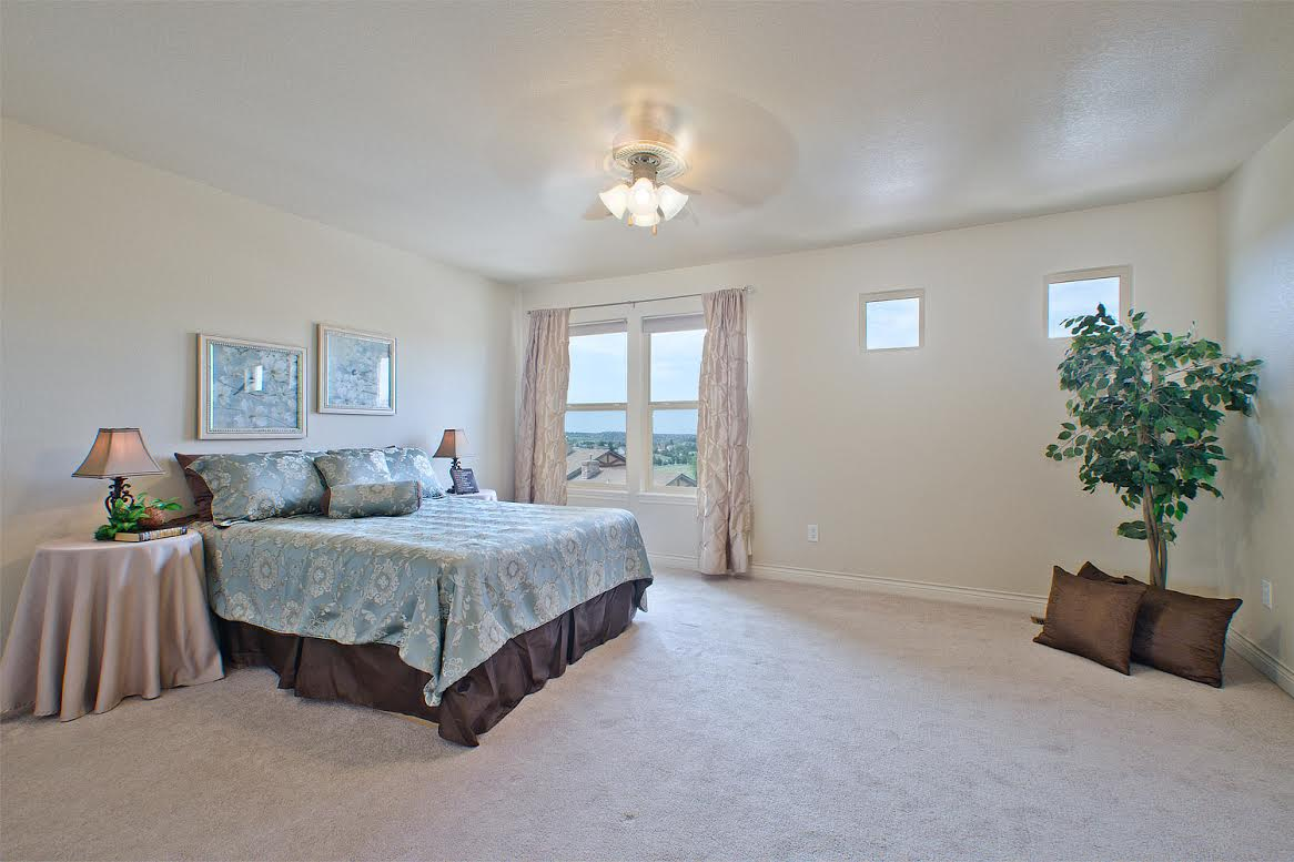 Master Bedroom Daylight with Views