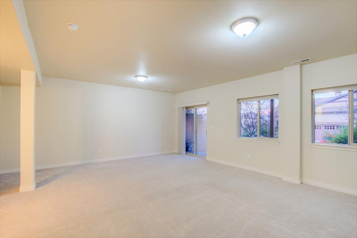 Basement Bedroom or Family Room with Walkout