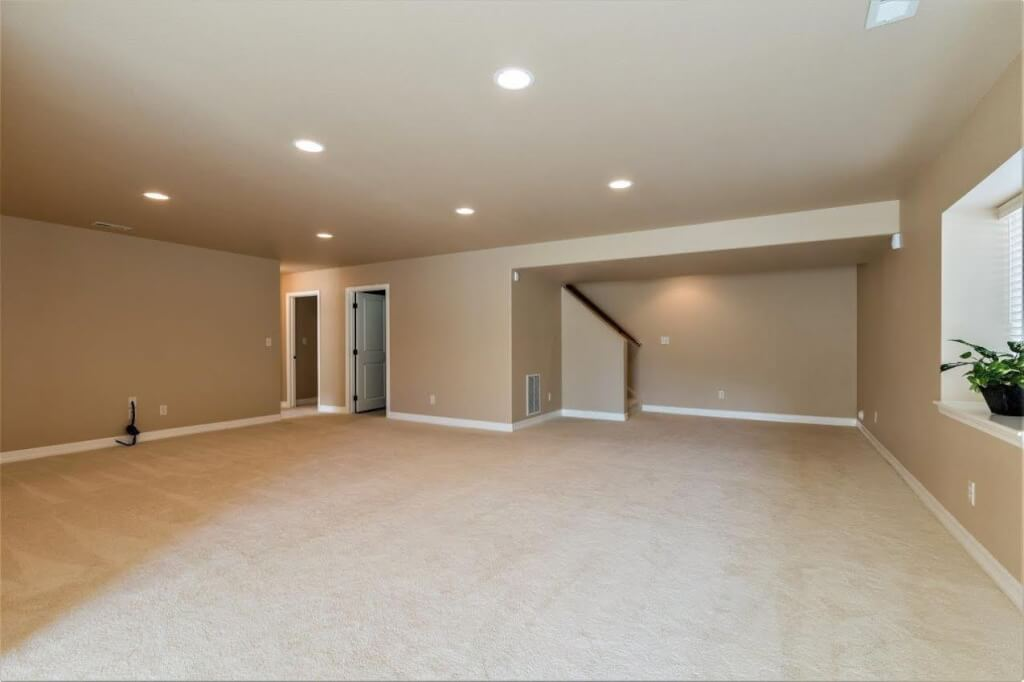 Large Open Walk Out Basement