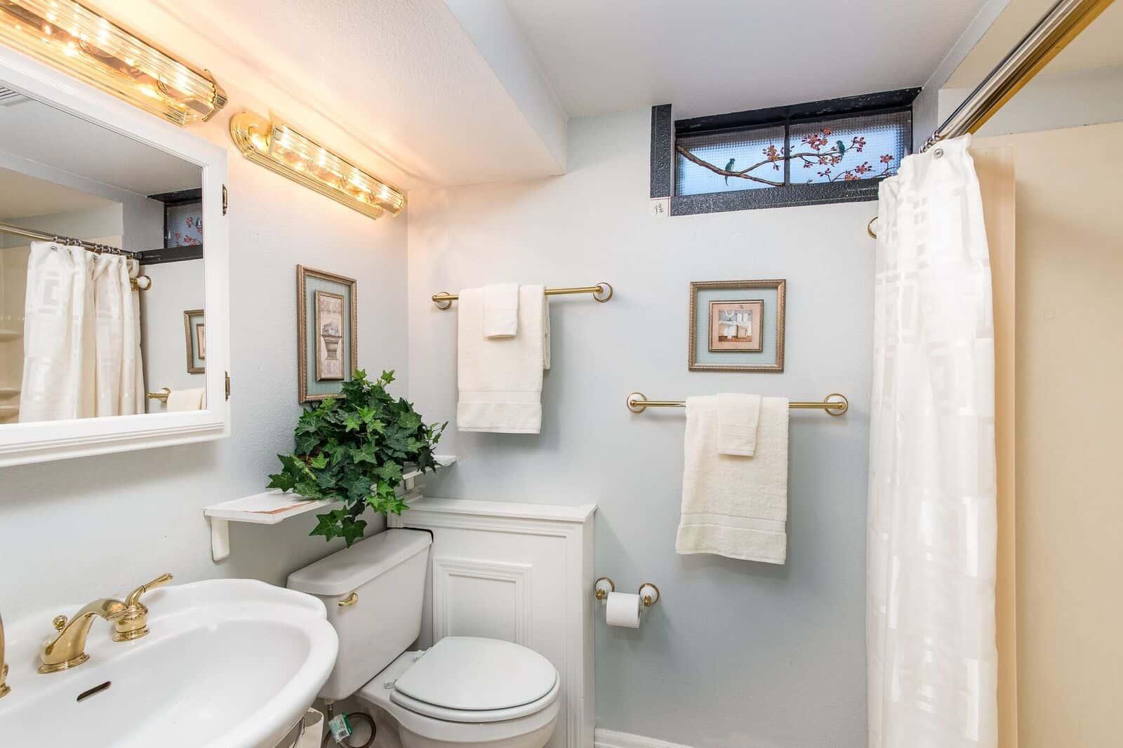 Lower Level Hall Bathroom