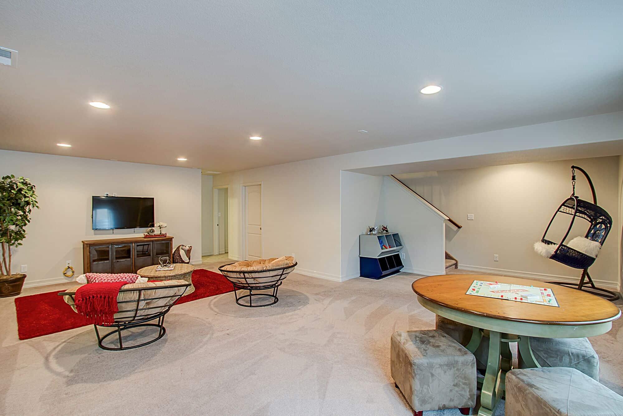Basement Recreation Room