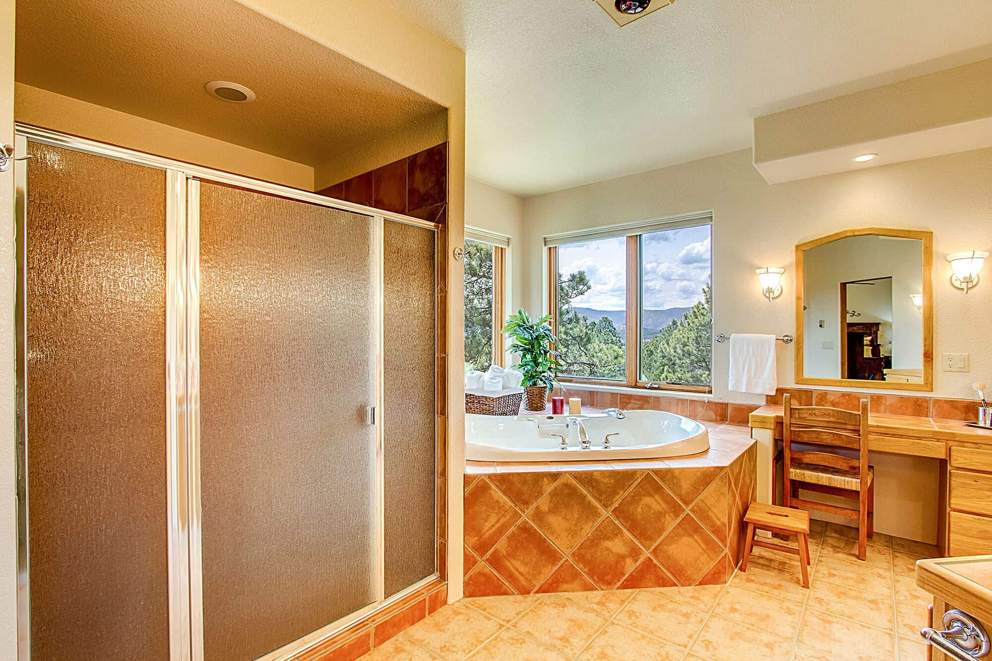 Master Shower and Jetted Soaking Tub