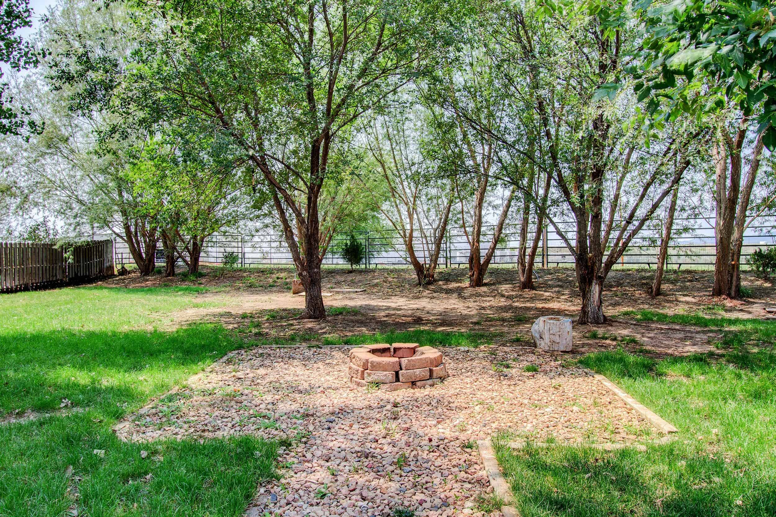 Huge Level Yard with Mature Trees and Fire Pit