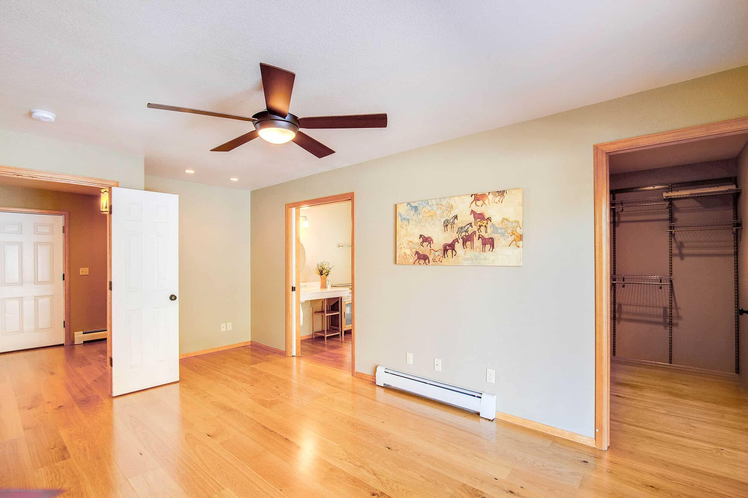 Master Bedroom Suite with Walk-In Closet