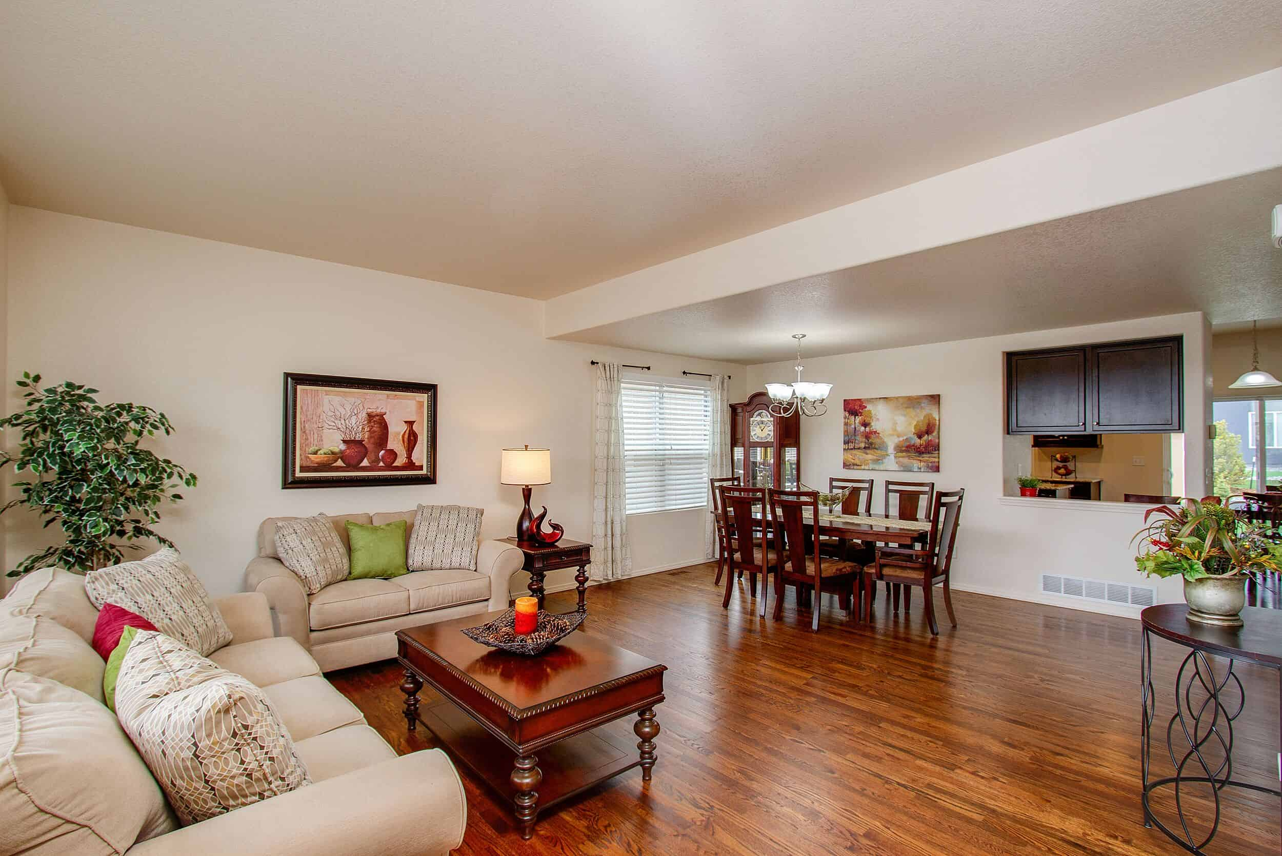 Formal Living Room and Dining Room